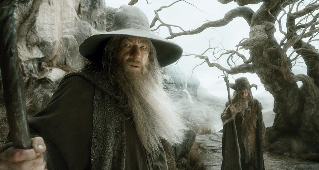 La Desolazione di Smaug: Gandalf e Radagast
