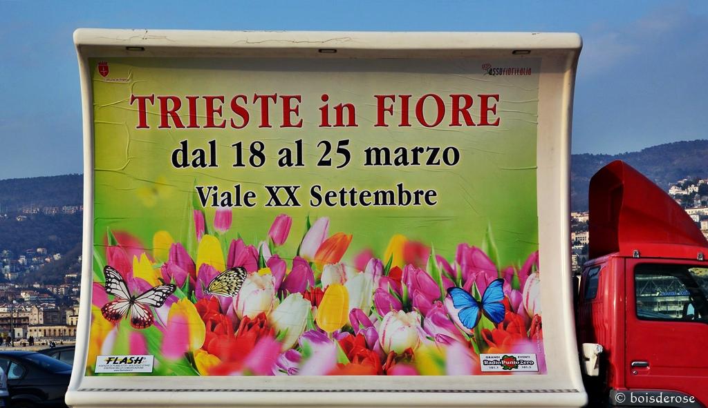 Trieste In Fiore 2015 © boisderose