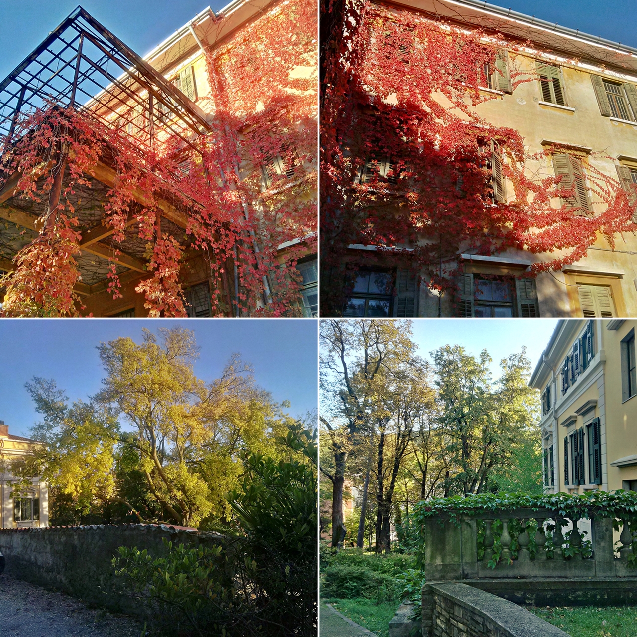 Autunno collage: edifici © leeliah99.altervista.org