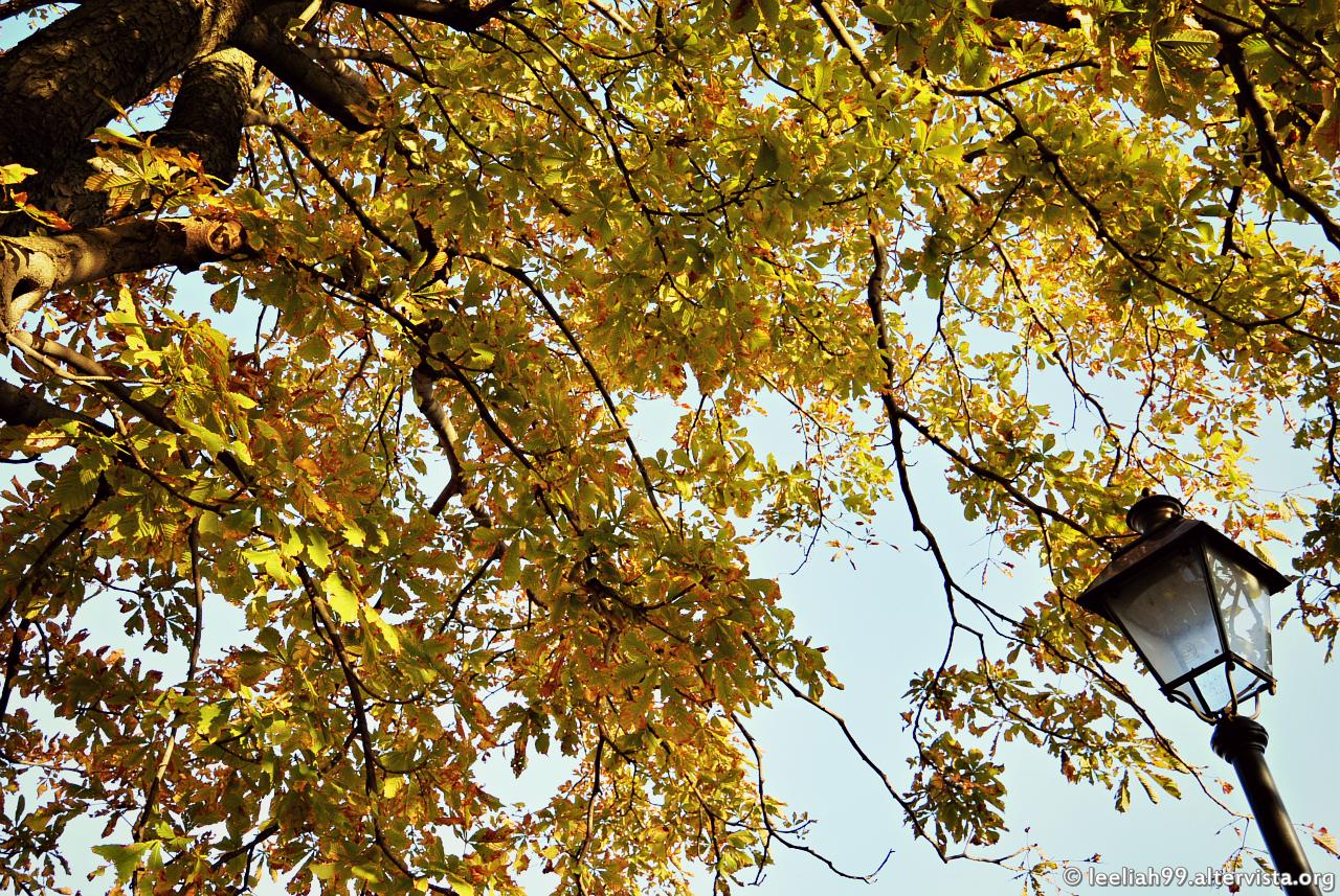 Autunno nel Parco di San Giovanni a Trieste © leeliah99.altervista.org
