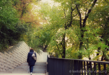 La scalinata verso il Castello © leeliah99.altervista.org