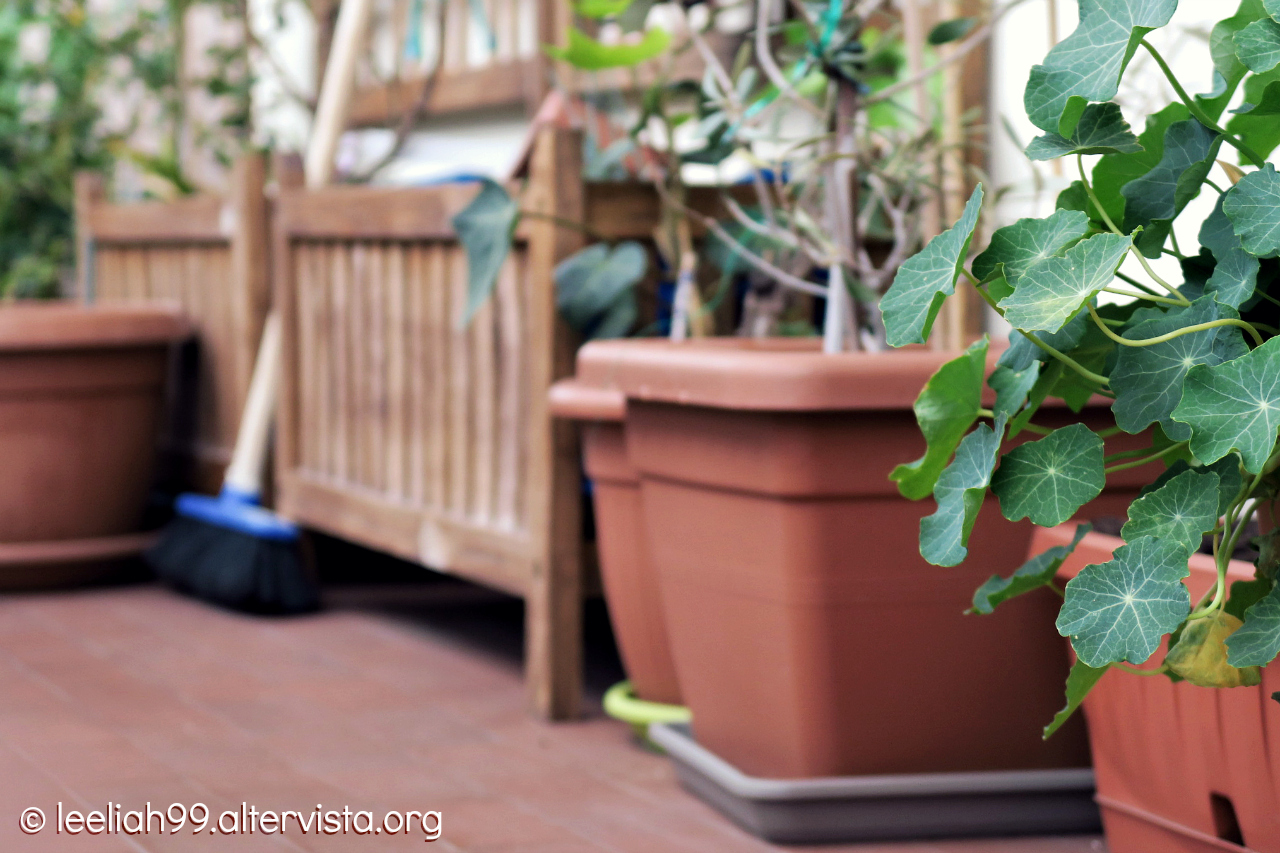 Terrazzo in primavera © leeliah99.altervista.org