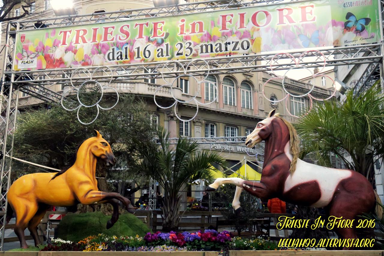 Trieste In Fiore 2016 © leeliah99.altervista.org