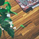 Polvere? Non c'è! © leeliah99.altervista.org