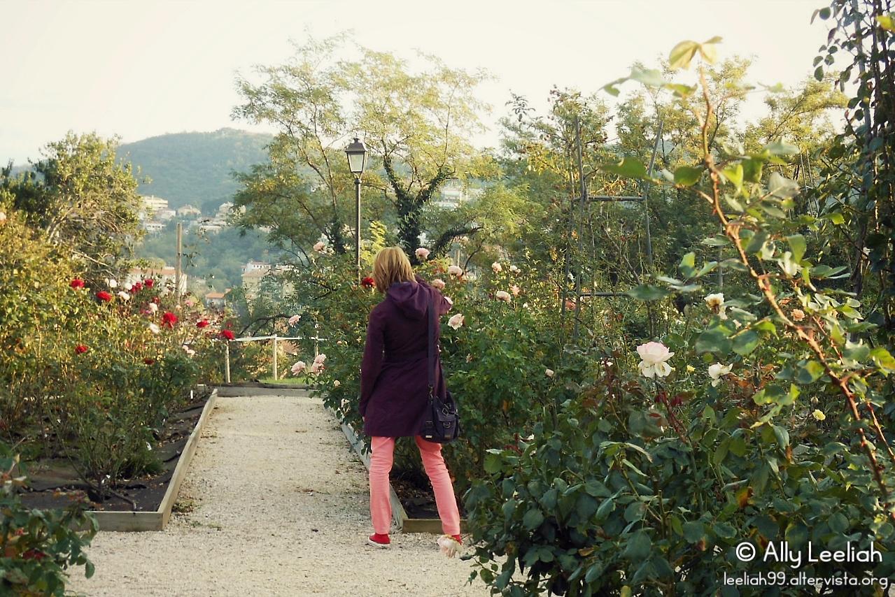 Alla ricerca di cinorrodi nel Parco di San Giovanni © leeliah99.altervista.org