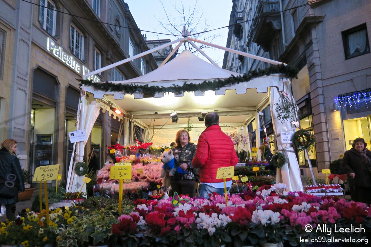 Natale in Viale a Trieste © leeliah99.altervista.org