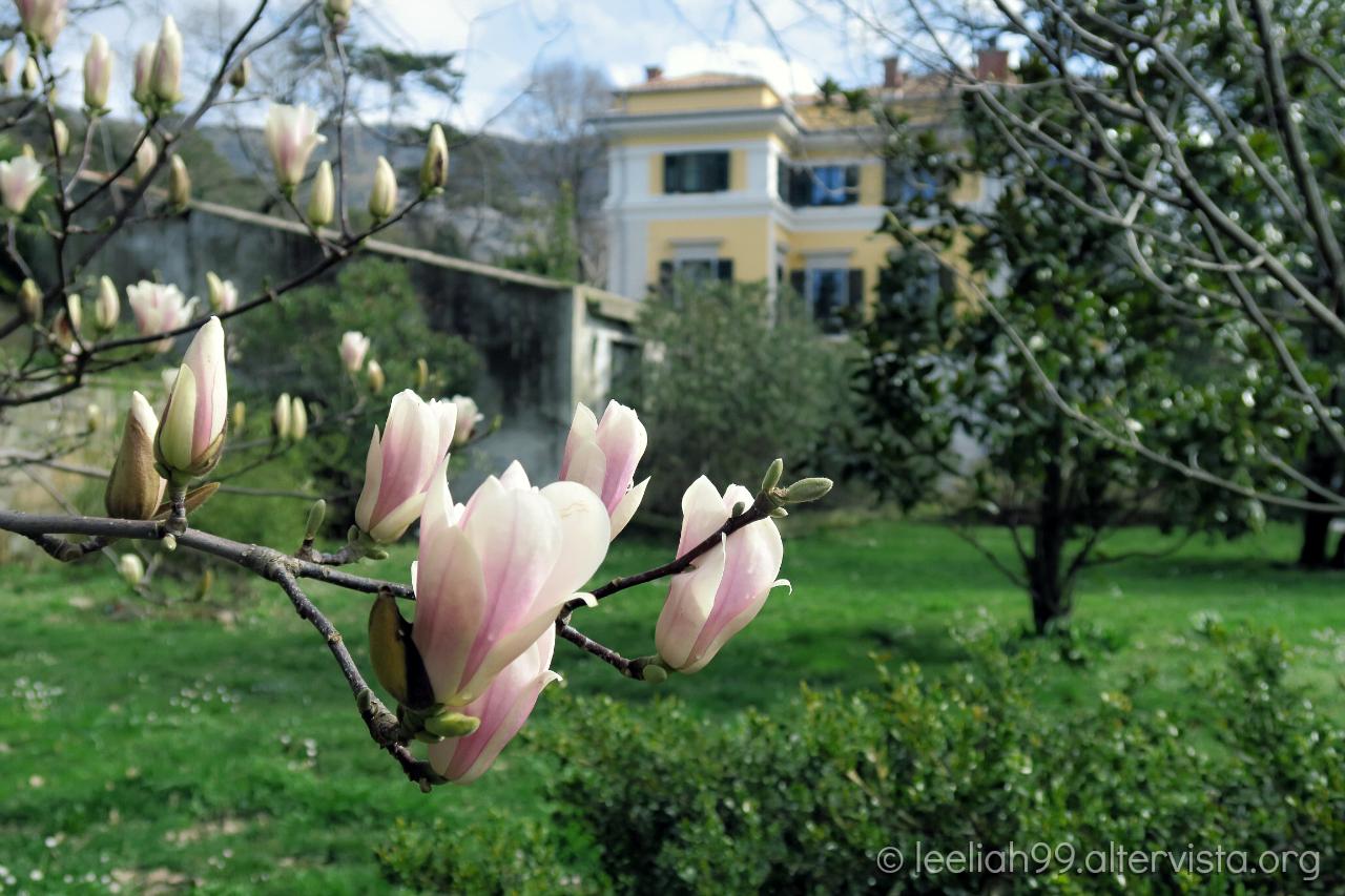 Primavera 2016 al Parco di San Giovanni a Trieste © leeliah99.altervista.org
