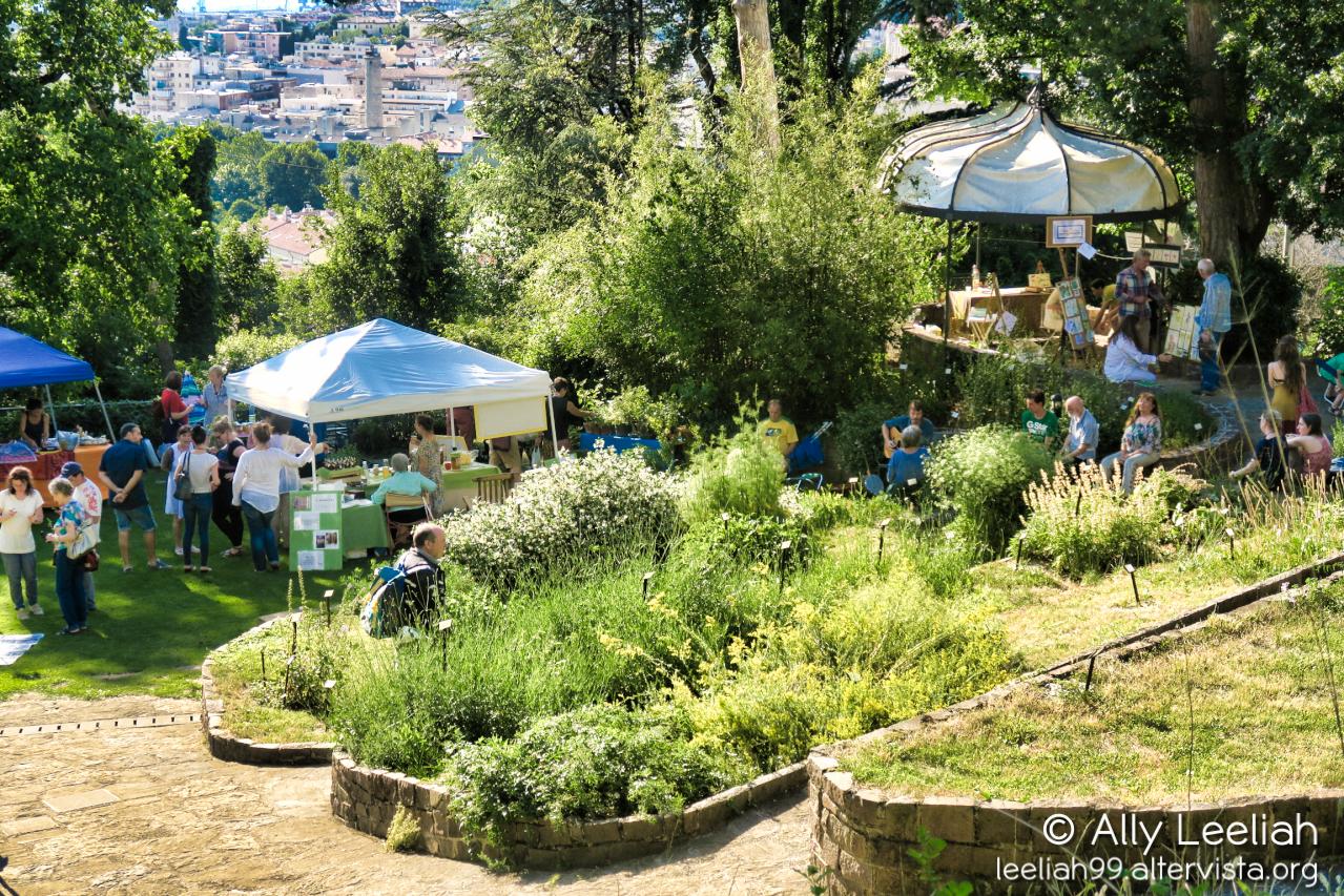 InVasati, tutti pazzi per i fiori © leeliah99.altervista.org