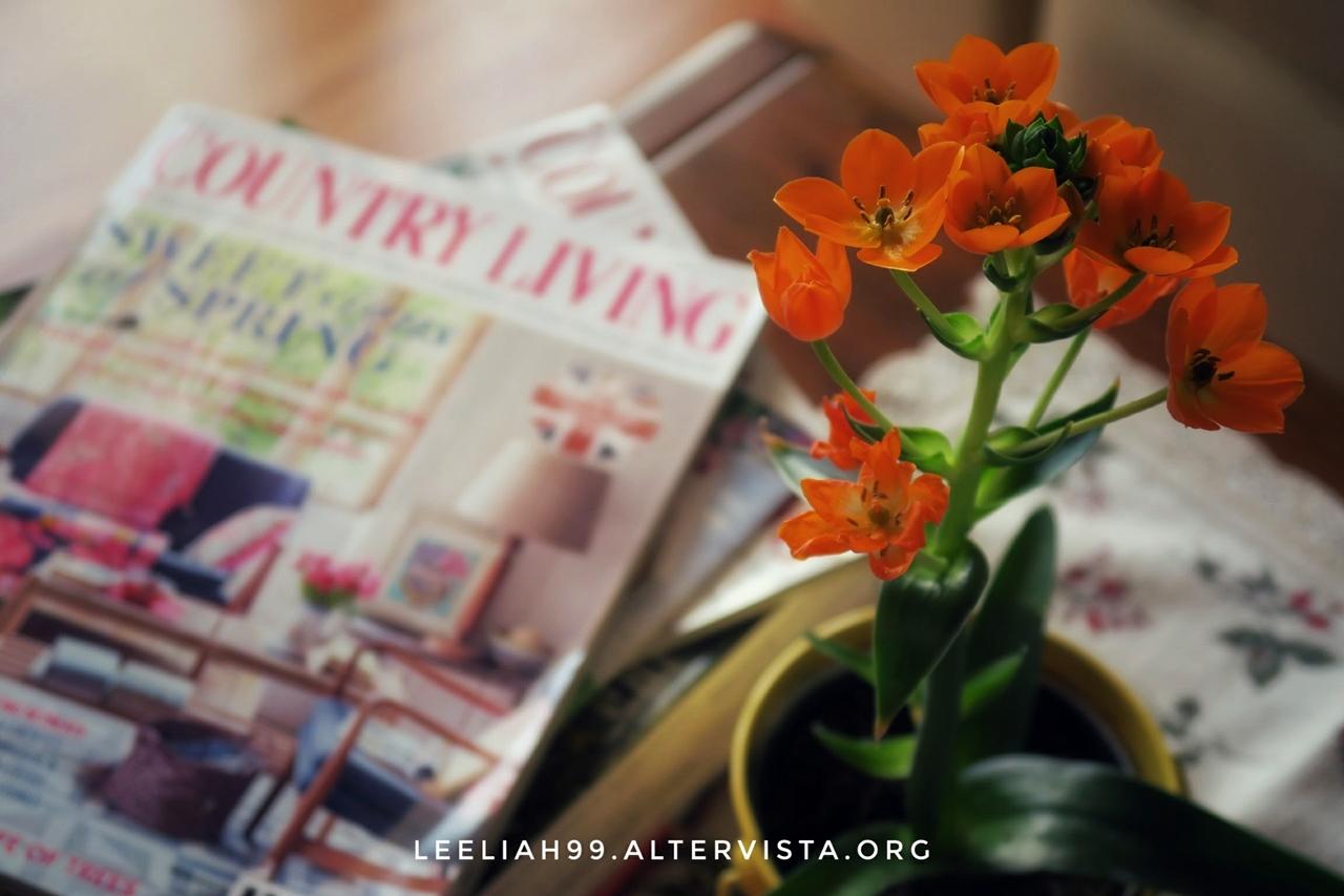 Country Living © leeliah99.altervista.org