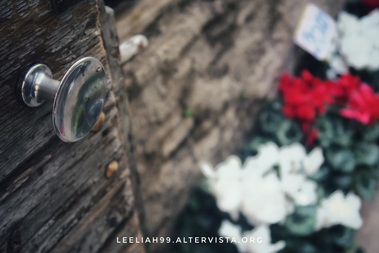 Giardino segreto © leeliah99.altervista.org
