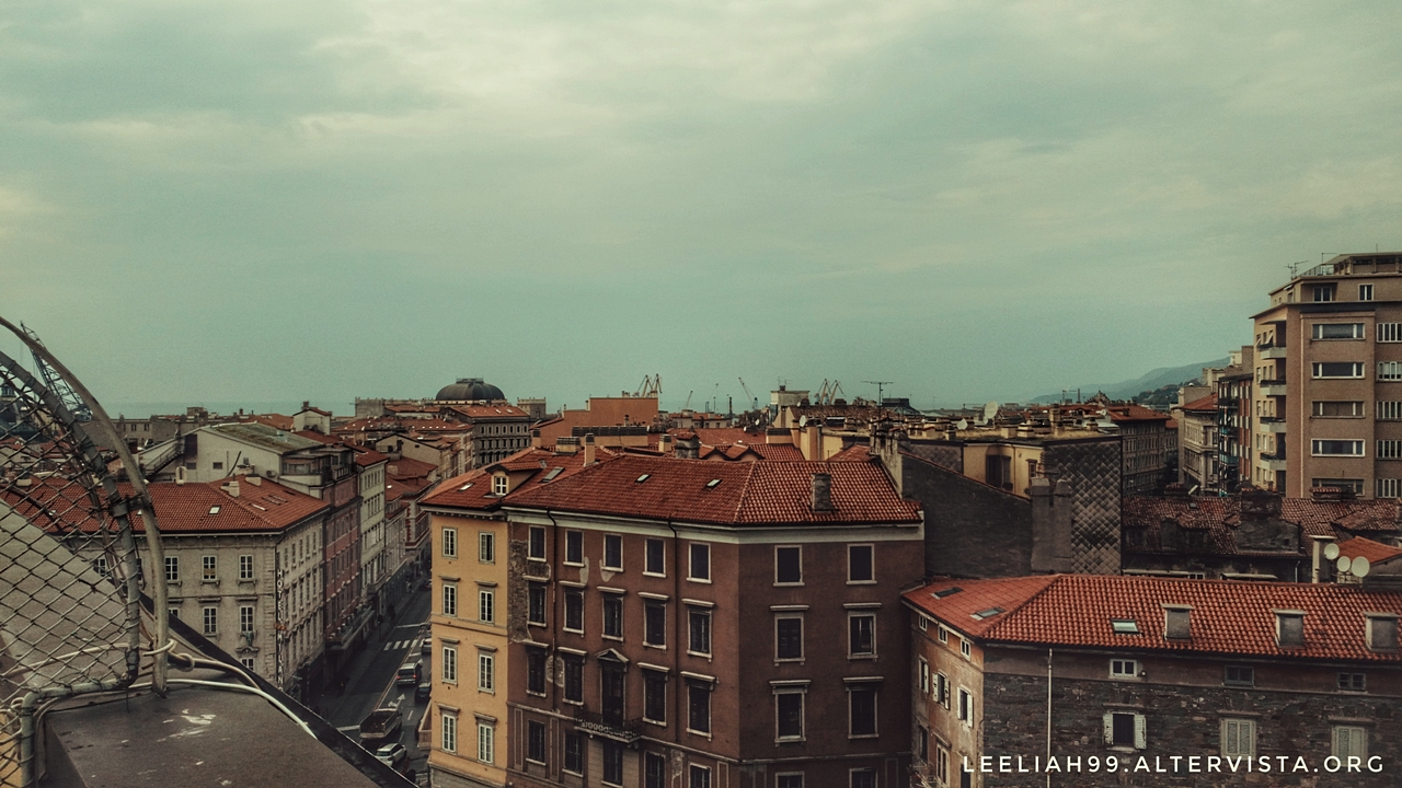 Trieste e il mare da Piazza Dalmazia © leeliah99.altervista.org