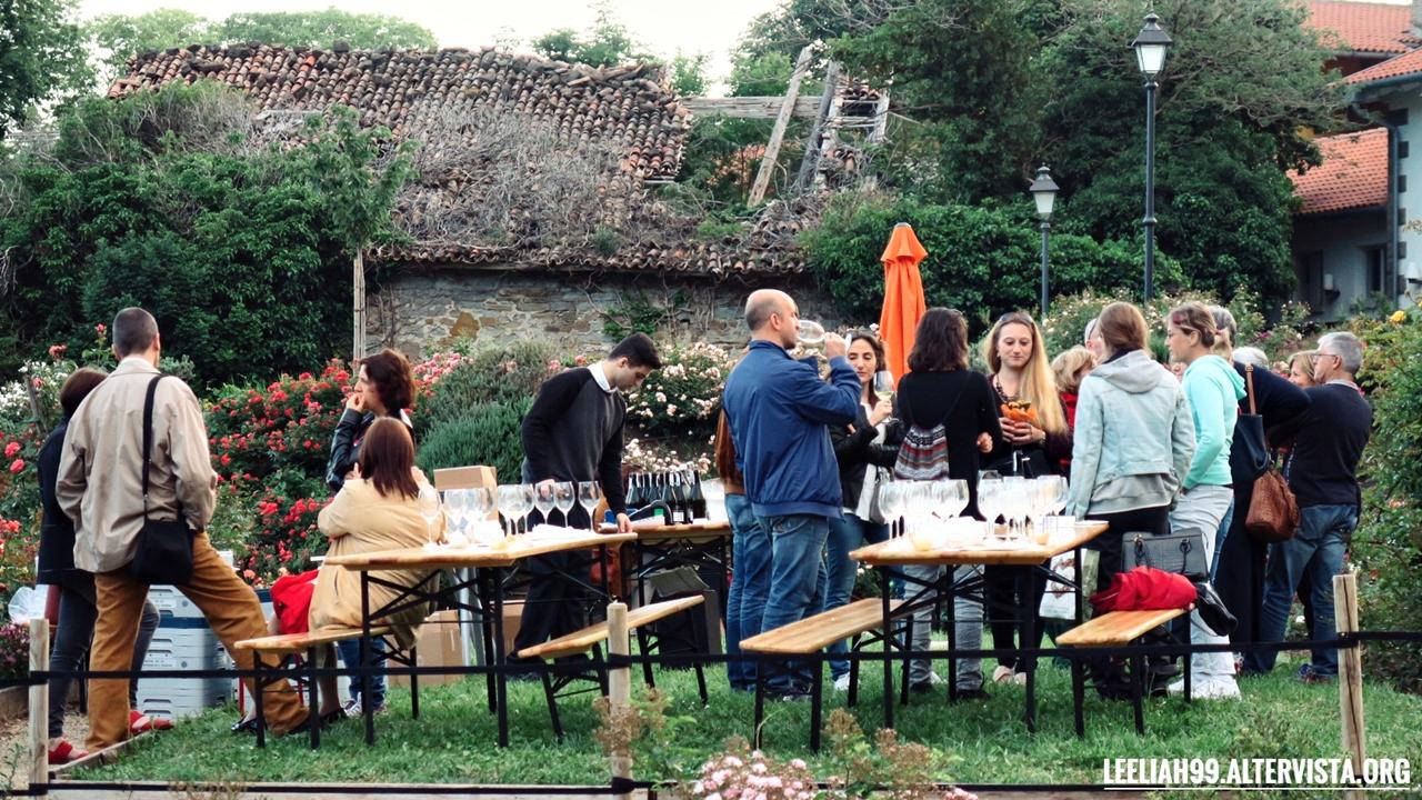 Rose Libri Musica Vino al roseto del Parco di San Giovanni a Trieste © leeliah99.altervista.org