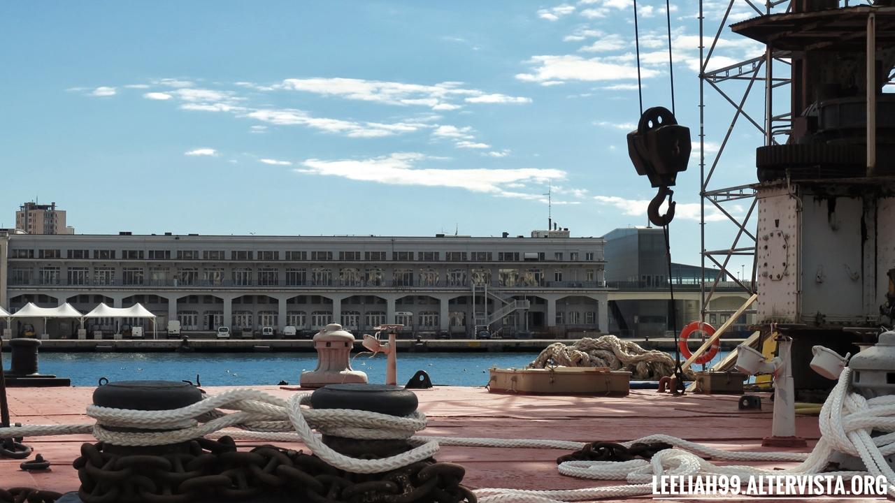 Trieste: Ursus © leeliah99.altervista.org