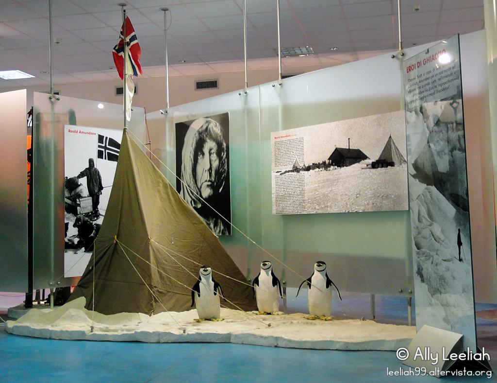 Open Day 2011: pinguini al Museo dell'Antartide © leeliah99.altervista.org