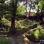 Civico Orto Botanico di Trieste © leeliah99.altervista.org