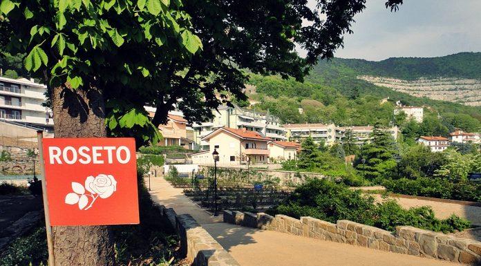 Il viale d'accesso al roseto del Parco di San Giovanni © leeliah99.altervista.org