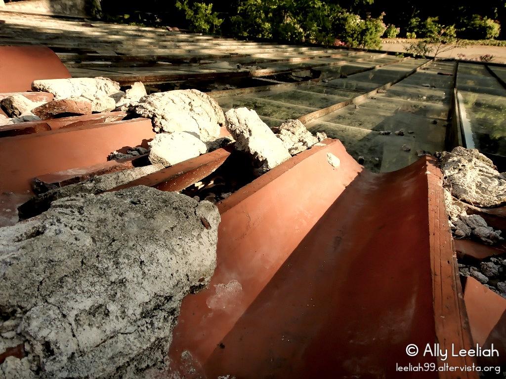 Parco di San Giovanni: il tetto della serra abbandonata © leeliah99.altervista.org