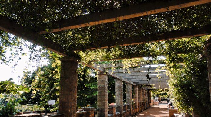 Parco di Villa Revoltella: la passeggiata © leeliah99.altervista.org