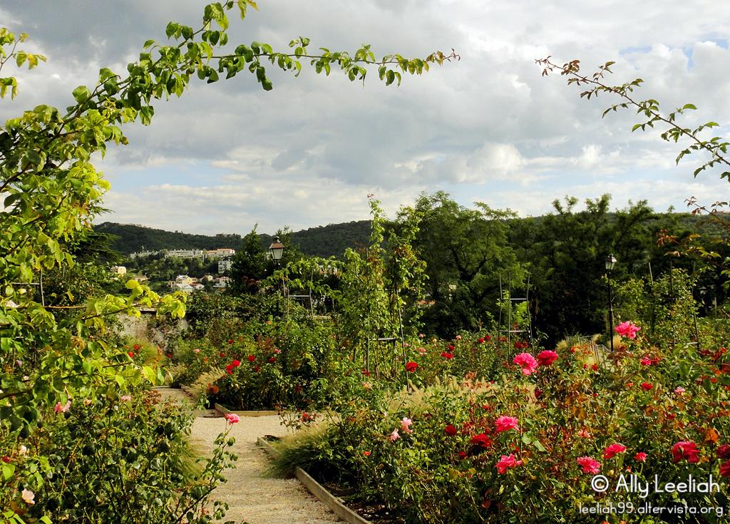 Roseto del Parco di San Giovanni © leeliah99.altervista.org