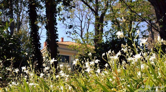 Pasqua al Parco San Giovanni © leeliah99.altervista.org