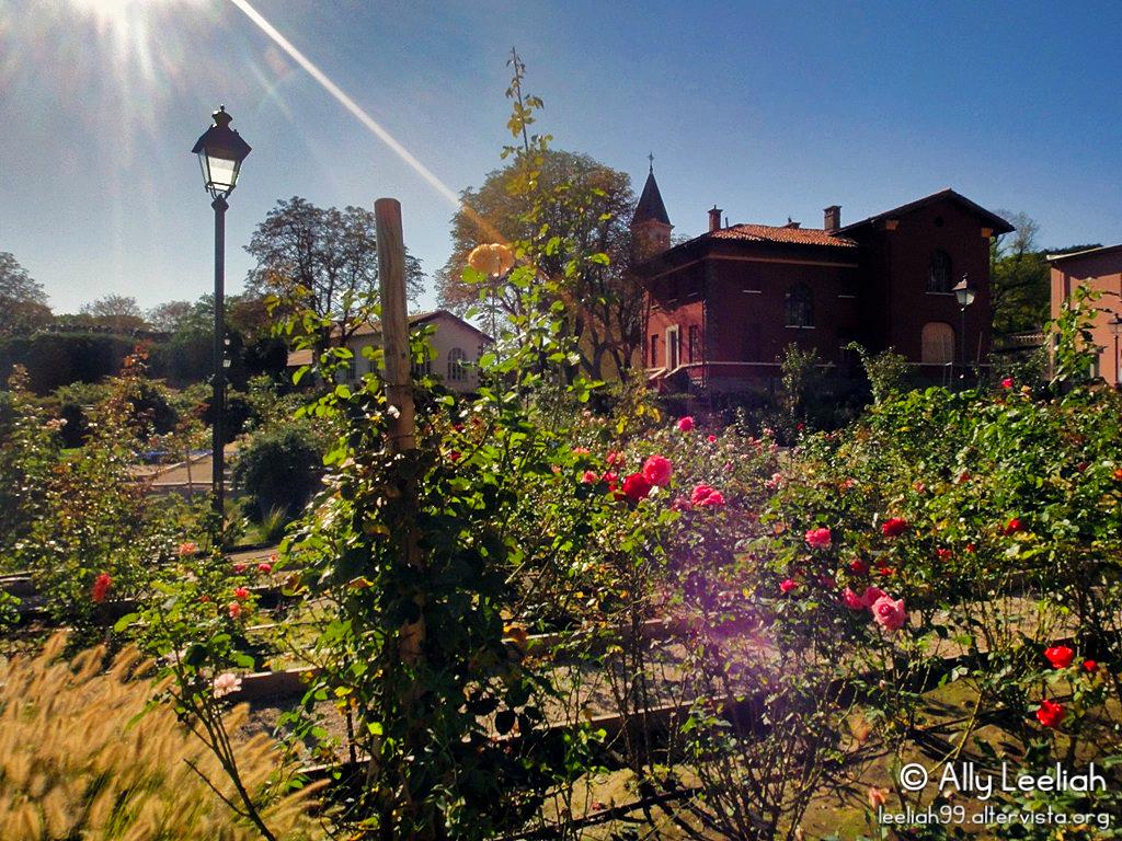 Il roseto del Parco di San Giovanni all'Open Day nel 2011 © leeliah99.altervista.org