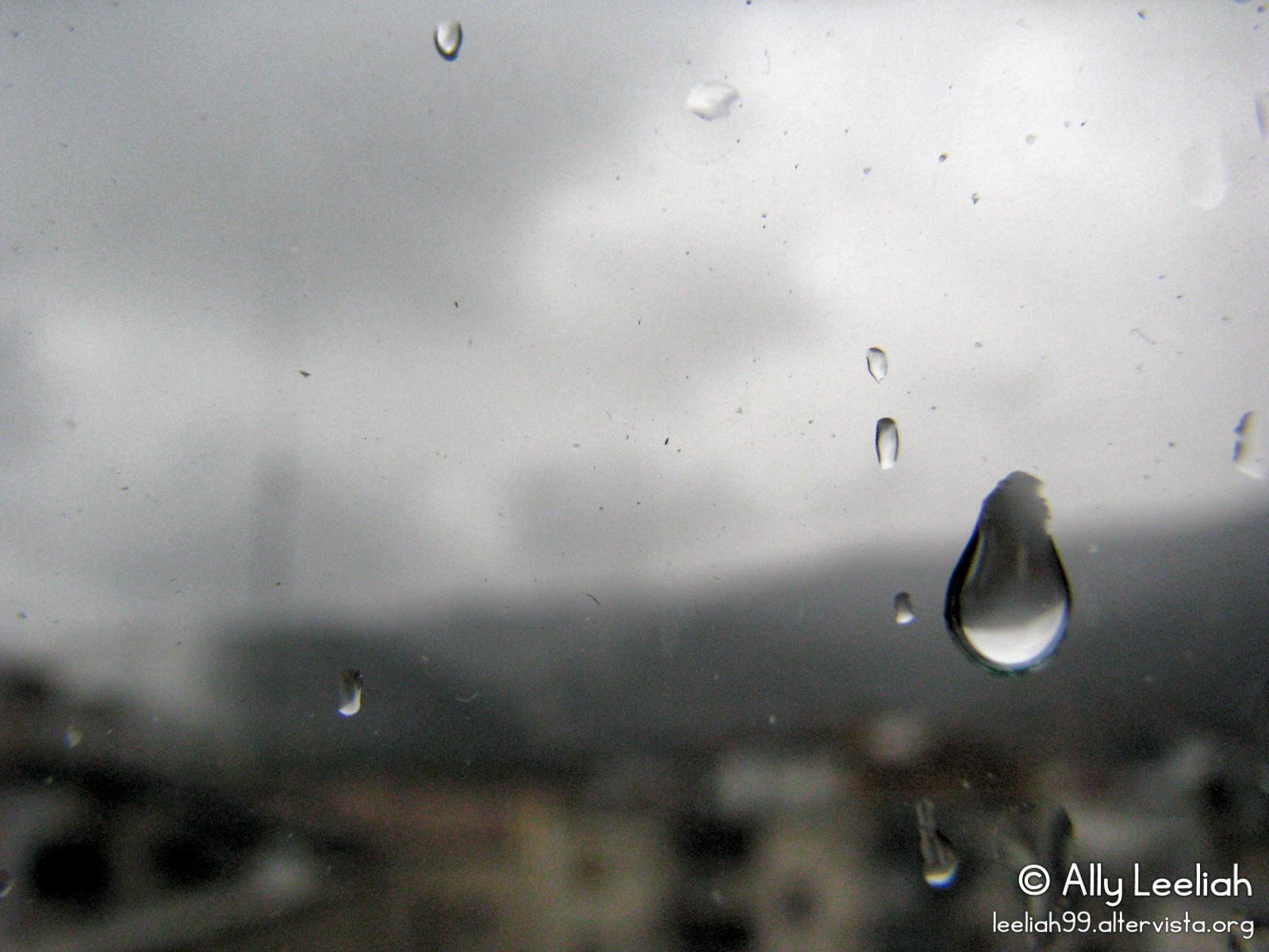 Lacrima © leeliah99.altervista.org